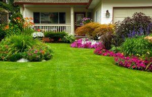 Best landscaping charlotte NC } greenworx180